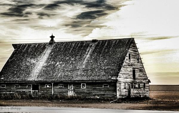 The Martin Barn